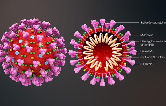 Super-Spreaders & Invisible Cases Make Coronavirus 'Uncontainable'